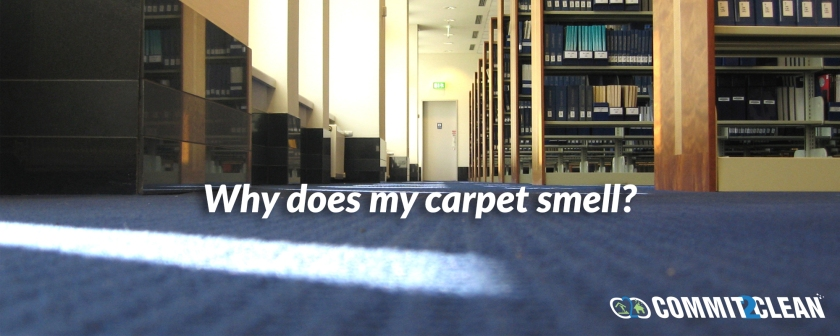 Why does my carpet smell?